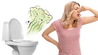 hoa hoc dang sau mui cua toilet